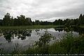 Le Jour ni l'Heure 0029 paysage devant Lilla Hyttnäs, maison de Carl et Karin Larsson à Sundborn, en Dalécarlie (Dalarna), Suède, dimanche 8 août 2010, 155905.jpg