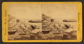 Ledge at Boat House, from Robert N. Dennis collection of stereoscopic views.png