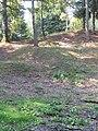 Les entonnoirs de Leintrey - Vue depuis le fond d'un entonnoir.jpg