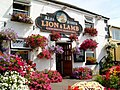 Lion and Lamb Public House - geograph.org.uk - 369621.jpg