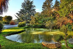 Reflections Lake Villa Il Hours
