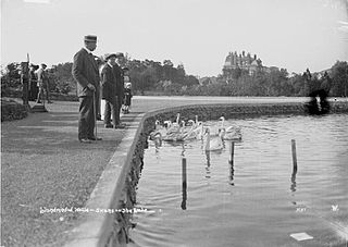 Llandrindod Wells - swans on the lake
