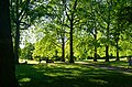 London - Green Park - View West.jpg