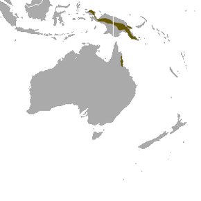 Description de l'image Long-tailed Pygmy Possum area.png.