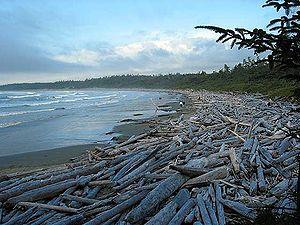 Pacific Rim National Park Reserve - Image: Longbeach prnp