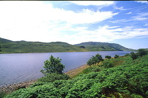 Lough Finn - Image: Lough Finn from the railway