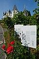 Luzern Meggen Schloss Meggenhorn roses.jpg