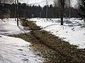 Lyovintsy, Kirovskaya oblast', Russia, 612079 - panoramio (131).jpg