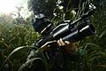 M203 Grenade Launcher.jpg