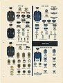 MILITARY UNIFORMS Insignia Organization 1959-1962 US Armed Forces Information DA Pam 355-120 056 UNITED STATES ARMY AIR FORCE Archive.org No known copyright.jpg