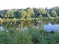 Magiscroft fisheries Main Loch - panoramio - 16charlie90 (2).jpg