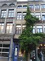 Maison - rue des Mineurs 25 - 4000 Liège.jpg