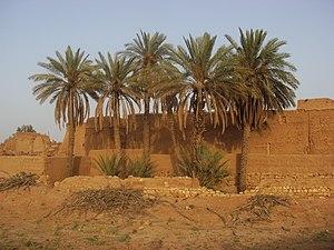 Al Majma'ah - Image: Majmaah palm trees