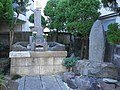 MamiyaRinzo20111228.jpg
