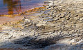 Mammoth Hot Springs 19 (8039012579).jpg