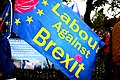 Manchester Brexit protest for Conservative conference, October 1, 2017 08.jpg