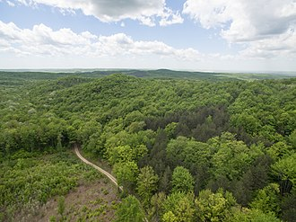 Manistee National Forest - A United States Forest Service (USFS) road near Briar Hill