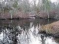 Manumuskin River New Jersey.jpg