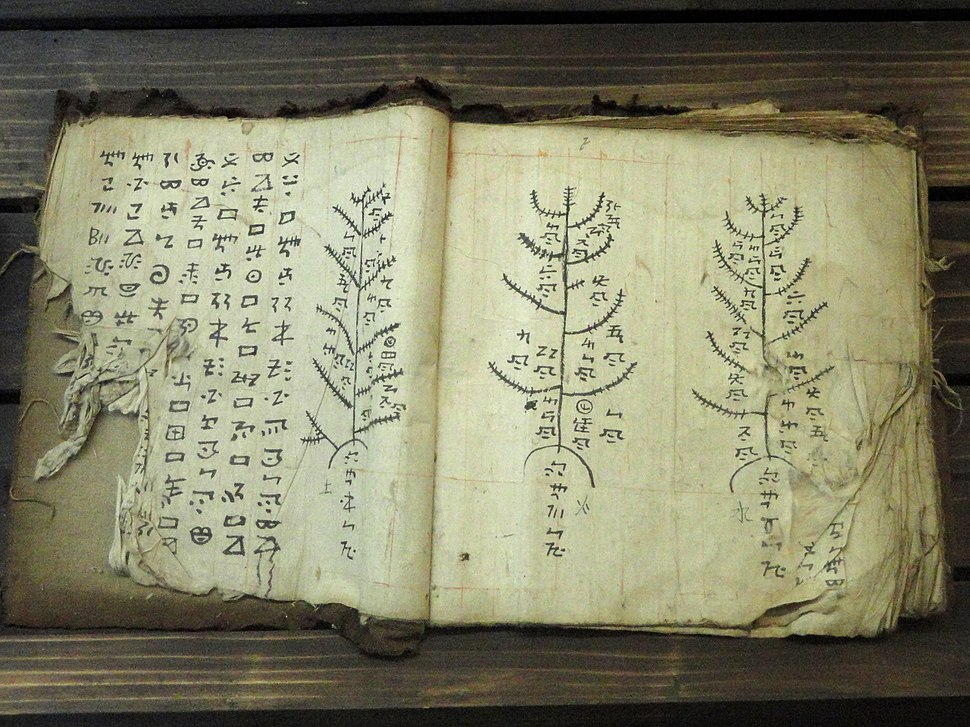 Manuscripts in the Yunnan Nationalities Museum - DSC03982