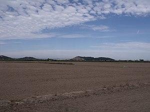 Marjal i Estany de la Ribera Sud del Xúquer 05.JPG
