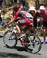 Martin Kohler 2, Menglers Hill, TDU 2010 Stage 1.JPG