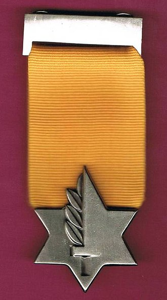 Medal of Valor (Israel) - Medal of Valor