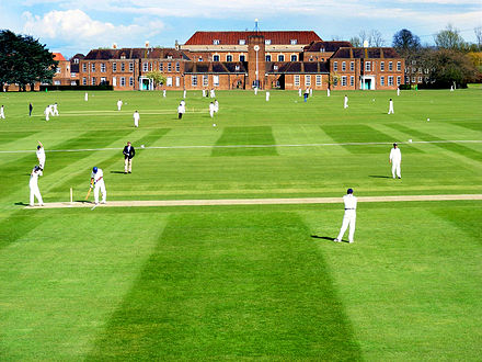 Cricket at Merchant Taylors' Merchant Taylors' School Cricket.jpg