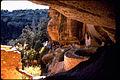 Mesa Verde National Park MEVE1980.jpg