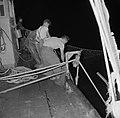 Met sardines gevulde visnetten worden binnen boord gehaald, Bestanddeelnr 255-2875.jpg