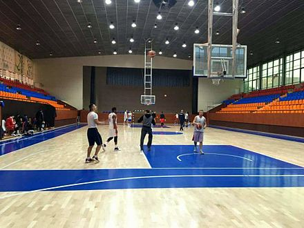 Armenia national basketball team at the Mika Arena