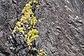 Milford Sound 14.jpg