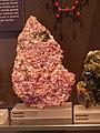 Mineral exhibit (32052965121).jpg