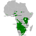 Mirafra africana distribution map, with races.png