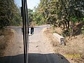 Mirror Image of the road near Anewadi Village - panoramio.jpg