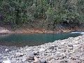 Moa - Cayo Guan 2008 - panoramio.jpg