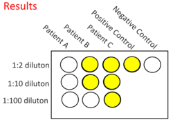 Diagram of results - Click for more description