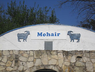 Mohair - Mohair is vital to the economy of the Texas Hill Country, including the Real County community of Camp Wood.