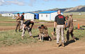 Mongolian service members run through a pepper spray qualification course during Non-Lethal Weapons Executive Seminar (NOLES) 13 at Five Hills Training Area, Mongolia, Aug. 21, 2013 130821-M-DR618-104.jpg