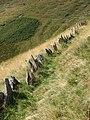 Monte Generoso 09-2008 - panoramio - adirricor (7).jpg