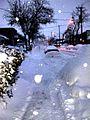 Montréal, quarier St-Michel, l'hiver 01 K.D.JPG
