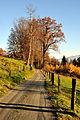 Moosburg Krainig Fahrweg 05112010 740.jpg