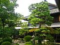 Morikawa,Takehara.jpg