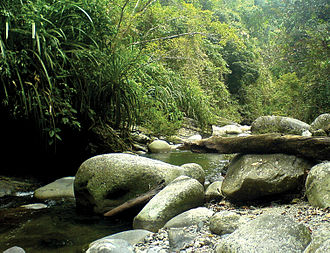 Palawan - Taranaban River