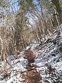 Mt.Sajiki trail 2012-03.JPG