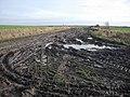 Muddy byway - geograph.org.uk - 1086696.jpg
