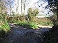 Muddy road near Waytown - geograph.org.uk - 348571.jpg