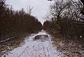Murovanokurylovets'kyi district, Vinnyts'ka oblast, Ukraine - panoramio.jpg