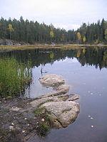 Mustalampi Lake in Nuuksio.jpg