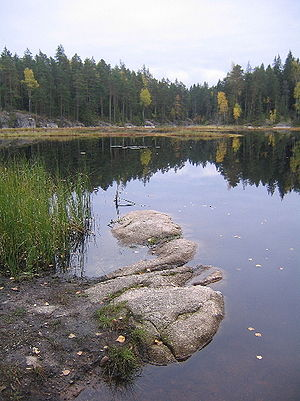 Nuuksio National Park - Mustalampi Lake