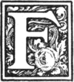 Muusmann-Matadora-F.png